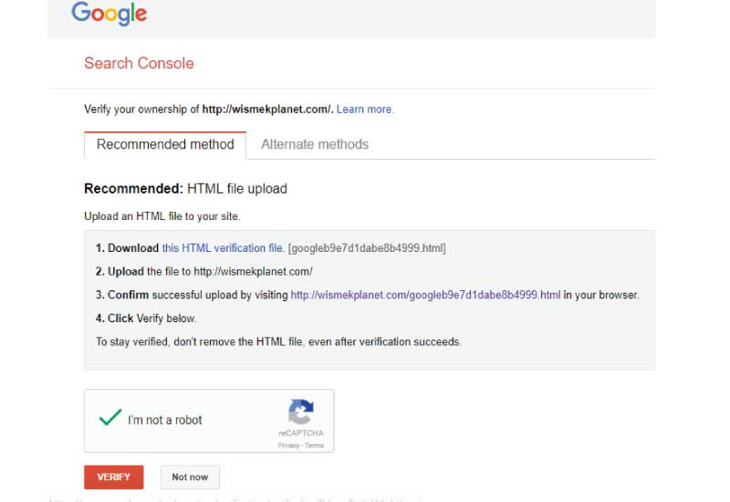 Verifying your website with Google Search Console